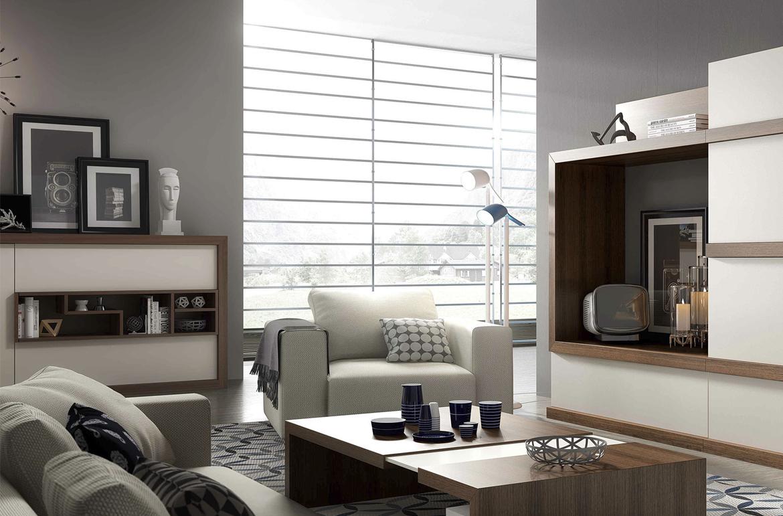 goedkoop luxe interieur berging bank sofa in woonkamer