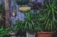 tuin met planten kleurige achtergrond